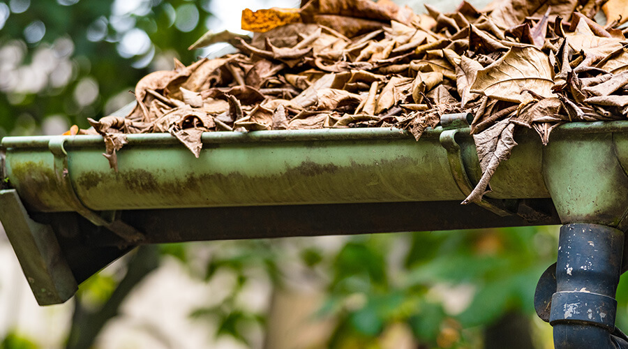 leafs clogging up guttering