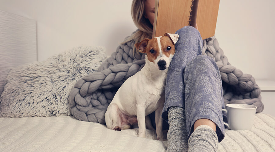woman in bed comfy with dog