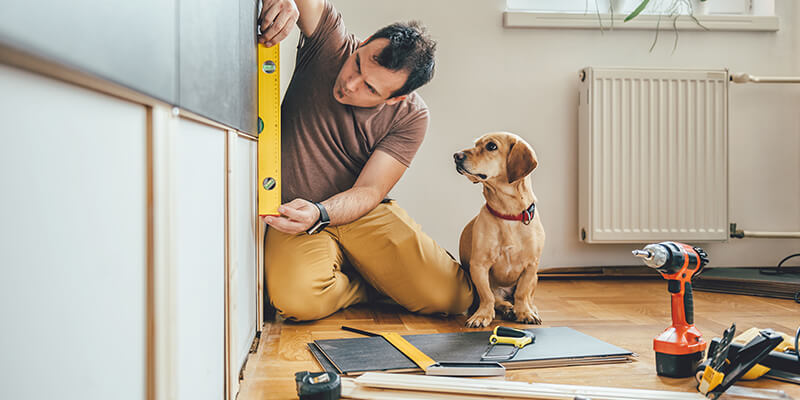man doing diy with dog